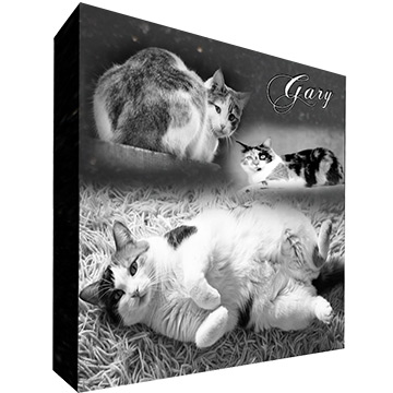 Design Pet Headstone